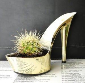 ayakkabi şeklinde kaktus saksi