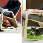 evcil dostunuzla birlikte kullanacağınız harika bir koltuk