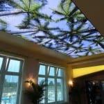 gozalıcı gergi tavan modelleri