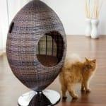 hasir kedi yatagi