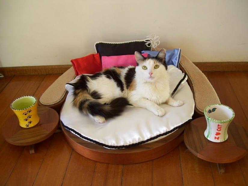 kedi yatak odasi
