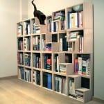 kitaplıga kedi merdiveni
