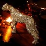 tasli dekoratif leopar
