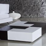 siyah beyaz modern orta sehpa modeli