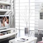 dogtas dolce belleza tv unitesi