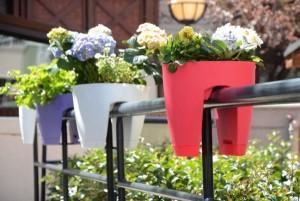 rengarenk yeni moda balkon saksilari