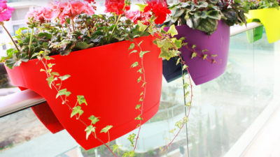 Rengarenk Dekoratif Balkon Saksıları