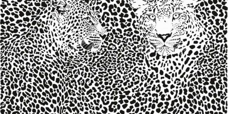 Sıra Dışı Dekoratif Duvar Kağıdı Modelleri 2015