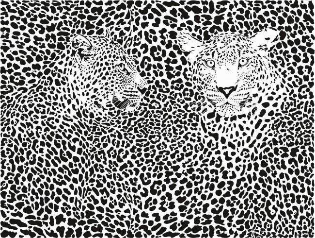 siyah beyaz leopar desenli duvar kagidi