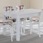 Evkur mutfak masası