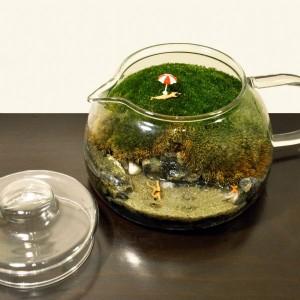 teraryum bitki duzenleme dizayn