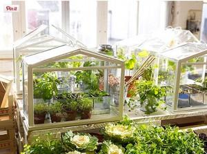 2016 IKEA Bahçe Süsleri