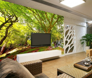 3D Duvar Kağıdı Manzara