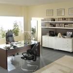 Ofis Dekorasyonu Fikirleri ve İpuçları