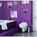 Ev Dekorasyonunda Mor Renklerin Kullanımı
