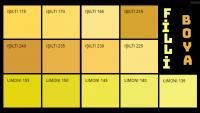 Filli Boya Sarı Renk Kartelası & Tonları ve İsimleri