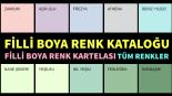 2019-2020 Filli Boya Renkleri Su Bazlı İç Cephe Kartelaları Kataloğu