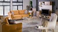 Lima krem ve sarı renk koltuk takımı